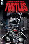 Teenage Mutant Ninja Turtles Urban Legends #8 Cover B Variant Frank Fosco & Erik Larsen Cover