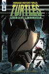 Teenage Mutant Ninja Turtles Urban Legends #9 Cover A Regular Frank Fosco Cover