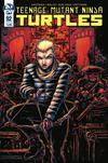 Teenage Mutant Ninja Turtles Vol 5 #92 Cover B Variant Kevin Eastman Cover