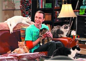 Big Bang Theory Season 3 & 4 Trading Cards Box