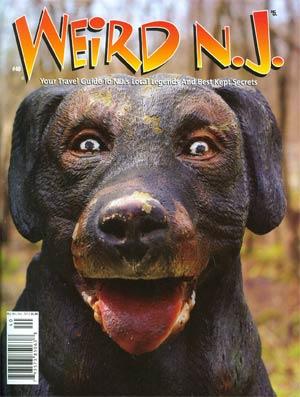 Weird NJ #40 May - Oct 2013