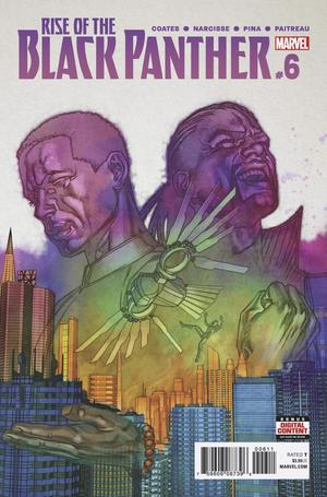 Rise Of The Black Panther #6 Cover A Regular Brian Stelfreeze Cover