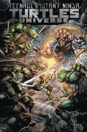 Teenage Mutant Ninja Turtles Universe Vol 4 Home TP