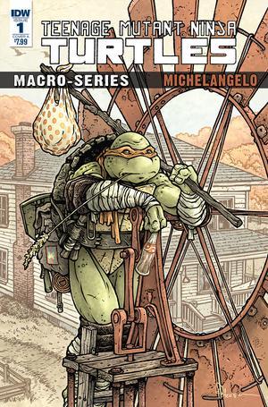 Teenage Mutant Ninja Turtles Macro-Series Michelangelo Cover A Regular David Petersen Cover