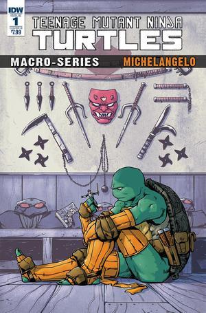 Teenage Mutant Ninja Turtles Macro-Series Michelangelo Cover C Incentive Ryan Brown Variant Cover