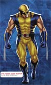Wolverine Door Poster By John Cassaday