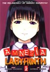 Amnesia Labyrinth Vol 2 GN