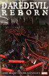 Daredevil Reborn TP