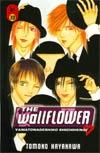 Wallflower Vol 30 GN