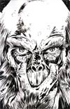 Planet Of The Apes Cataclysm #4 Incentive Gabriel Hardman Virgin Sketch Cover