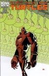 Teenage Mutant Ninja Turtles Vol 5 #17 Cover C Incentive Andy Kuhn Variant Cover