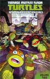 Teenage Mutant Ninja Turtles New Animated Adventures Vol 2 TP