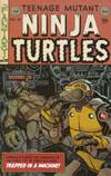 Teenage Mutant Ninja Turtles Vol 5 #48 Cover C Variant Ryan Browne EC Comics Subscription Cover