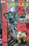 Teenage Mutant Ninja Turtles Vol 5 #45 Cover D 2nd Ptg Mateus Santolouco Variant Cover