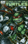 Teenage Mutant Ninja Turtles Vol 5 #48 Cover B Regular Kevin Eastman Cover