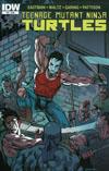 Teenage Mutant Ninja Turtles Vol 5 #52 Cover A Regular Ken Garing Cover