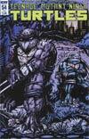Teenage Mutant Ninja Turtles Vol 5 #54 Cover B Variant Kevin Eastman Subscription Cover