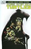 Teenage Mutant Ninja Turtles Vol 5 #52 Cover C Incentive Ibrahim Moustafa Artists Edition Variant Cover