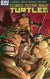 Teenage Mutant Ninja Turtles Vol 5 #53 Cover C Incentive Atilio Rojo Variant Cover