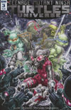 Teenage Mutant Ninja Turtles Universe #3 Cover A Regular Freddie Williams Cover