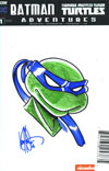 Batman Teenage Mutant Ninja Turtles Adventures #1 Cover I DF Blank & Remarked Ken Haeser Turtle Hand-Drawn Sketch Variant Cover