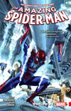 Amazing Spider-Man Worldwide Vol 4 TP