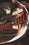 Akame Ga Kill Vol 13 GN