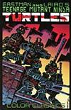 Teenage Mutant Ninja Turtles Color Classics Vol 1 TP