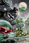 Batman Teenage Mutant Ninja Turtles Deluxe Edition HC