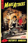 Mars Attacks Vol 4 #1 Cover D Variant Robert Hack Cover