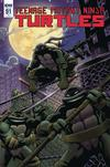 Teenage Mutant Ninja Turtles Vol 5 #91 Cover C Incentive Karl Moline Variant Cover
