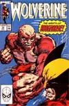 Wolverine Vol 2 #18
