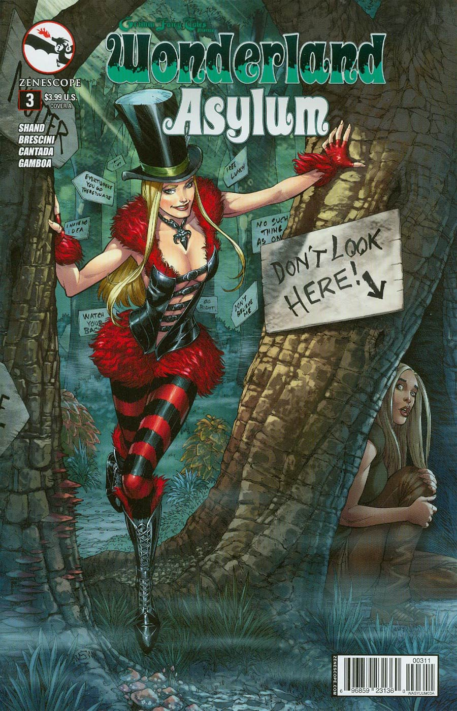 Grimm Fairy Tales Presents Wonderland Asylum #3 Cover A Mike S Miller