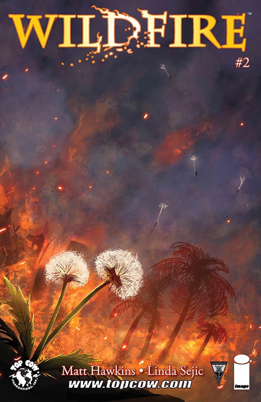 Wildfire #2 Cover B Stjepan Sejic