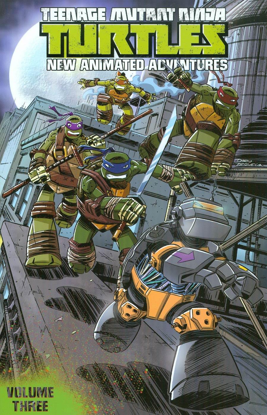 Teenage Mutant Ninja Turtles New Animated Adventures Vol 3 TP