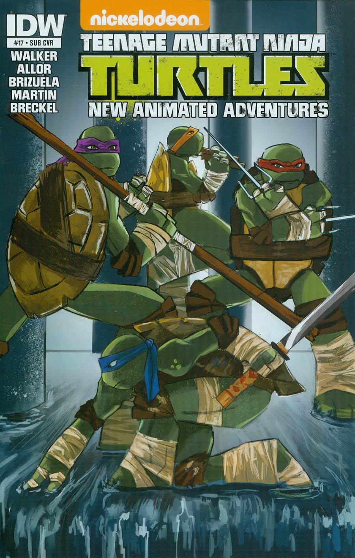 Teenage Mutant Ninja Turtles New Animated Adventures #17 Cover B Variant Tanna Tucker Subscription Cover