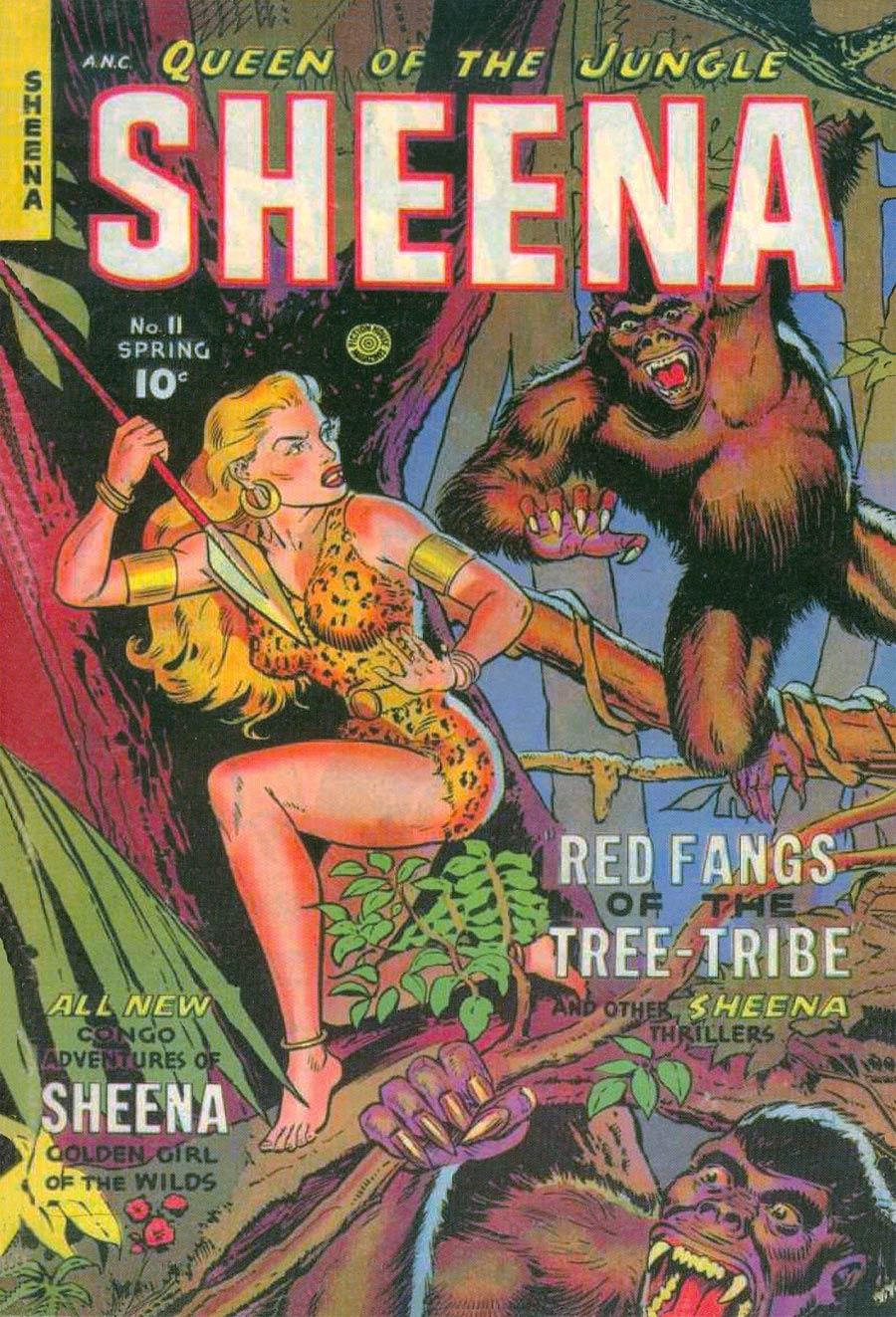 Roy Thomas Presents Sheena Queen Of The Jungle Vol 3 HC Slipcase Edition