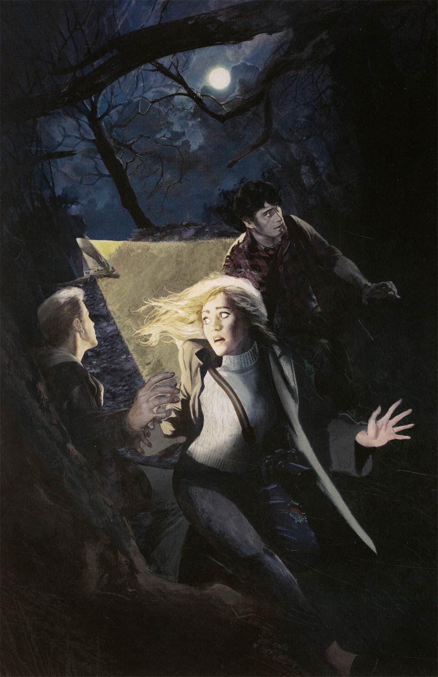 Nancy Drew And The Hardy Boys The Big Lie #4 Cover D Incentive Fay Dalton Virgin Cover