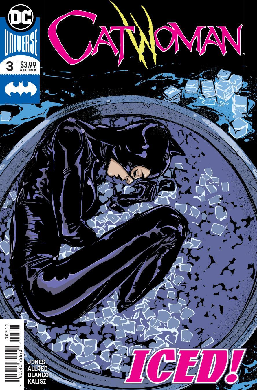 Catwoman Vol 5 #3 Cover A Regular Joelle Jones Cover