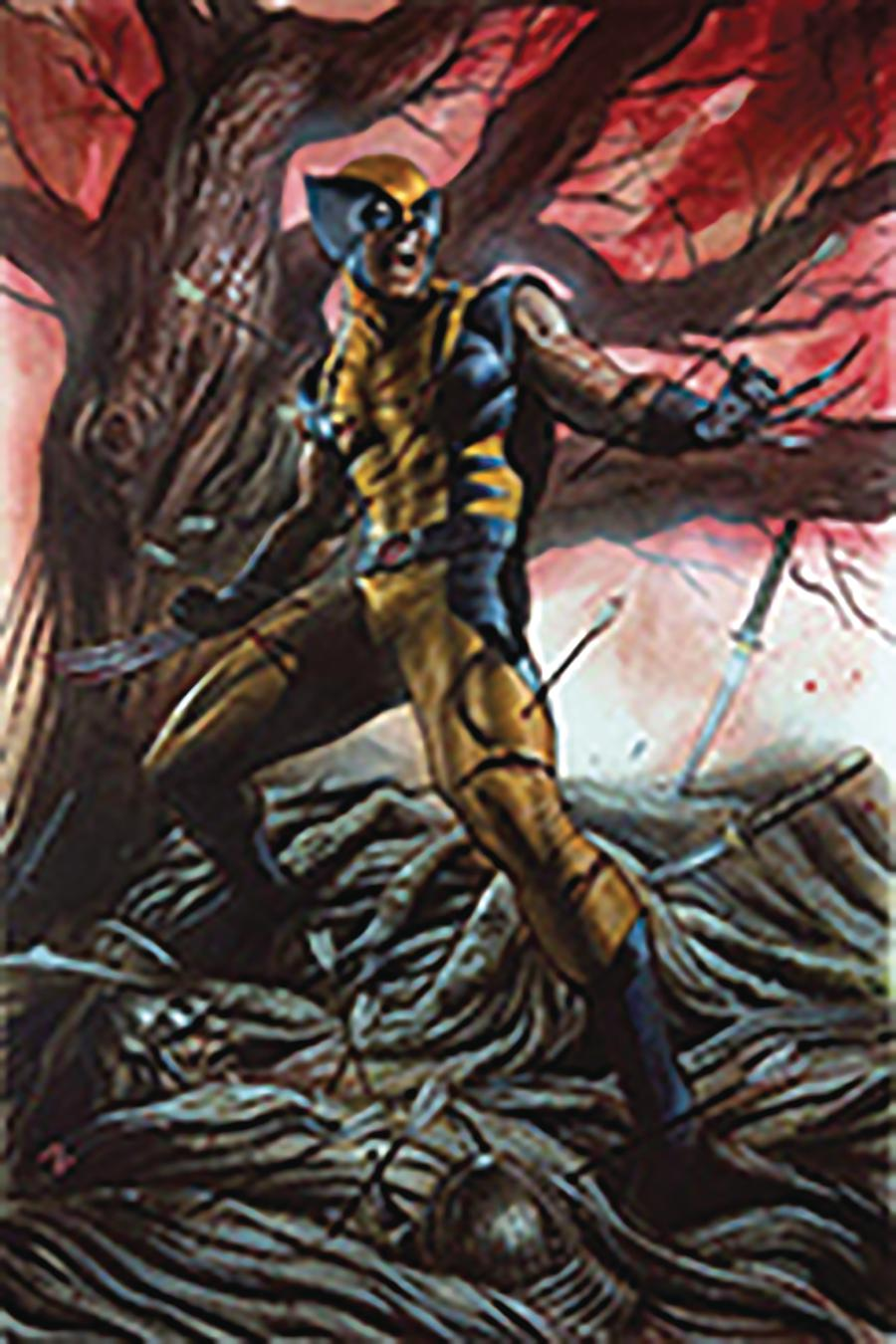 Return Of Wolverine #1 Cover Z-G DF CSA Exclusive Adi Granov Virgin Variant Cover