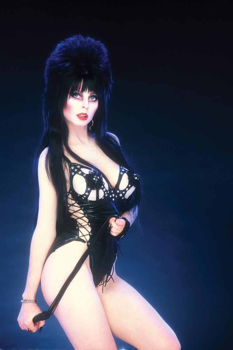 Elvira Shape Of Elvira #1 Cover M Incentive Photo Virgin Cover