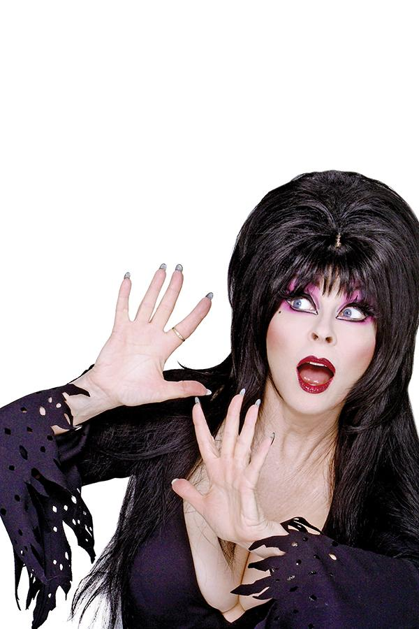 Elvira Shape Of Elvira #4 Cover J Incentive Photo Virgin Cover