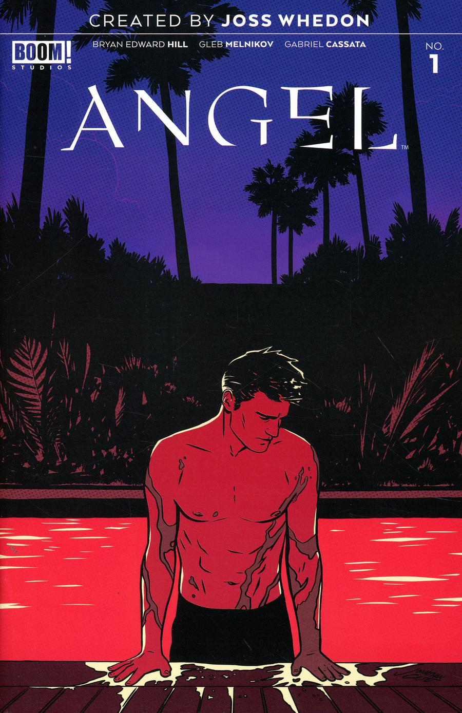 Angel Vol 4 #1 Cover D Incentive Boris Pelcer Variant Cover