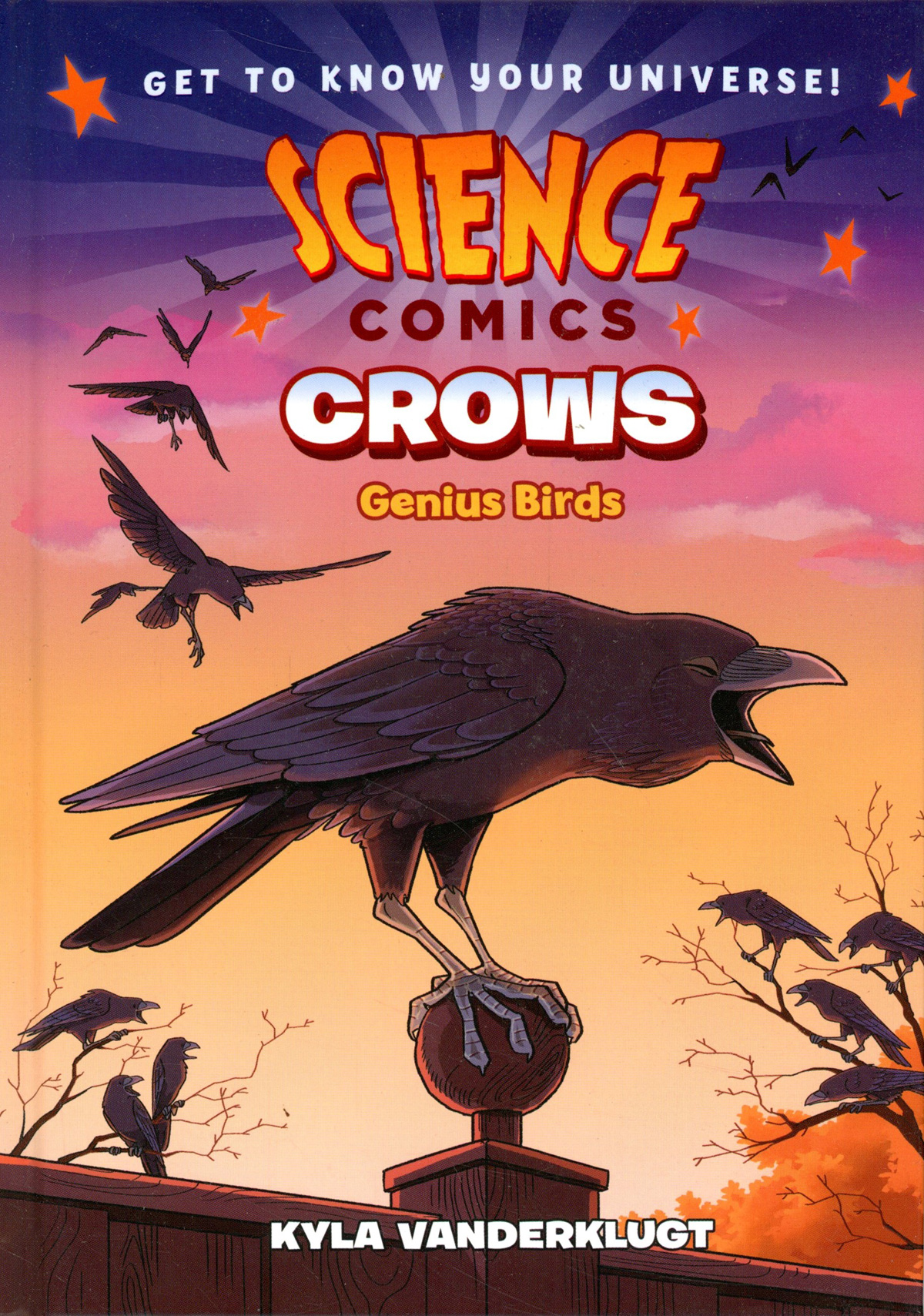 Science Comics Crows Bird Geniuses HC