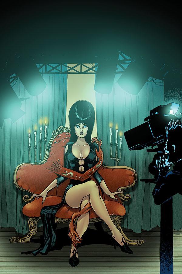 Elvira Mistress Of The Dark Vol 2 #12 Cover H Incentive Roberto Castro Virgin Cover