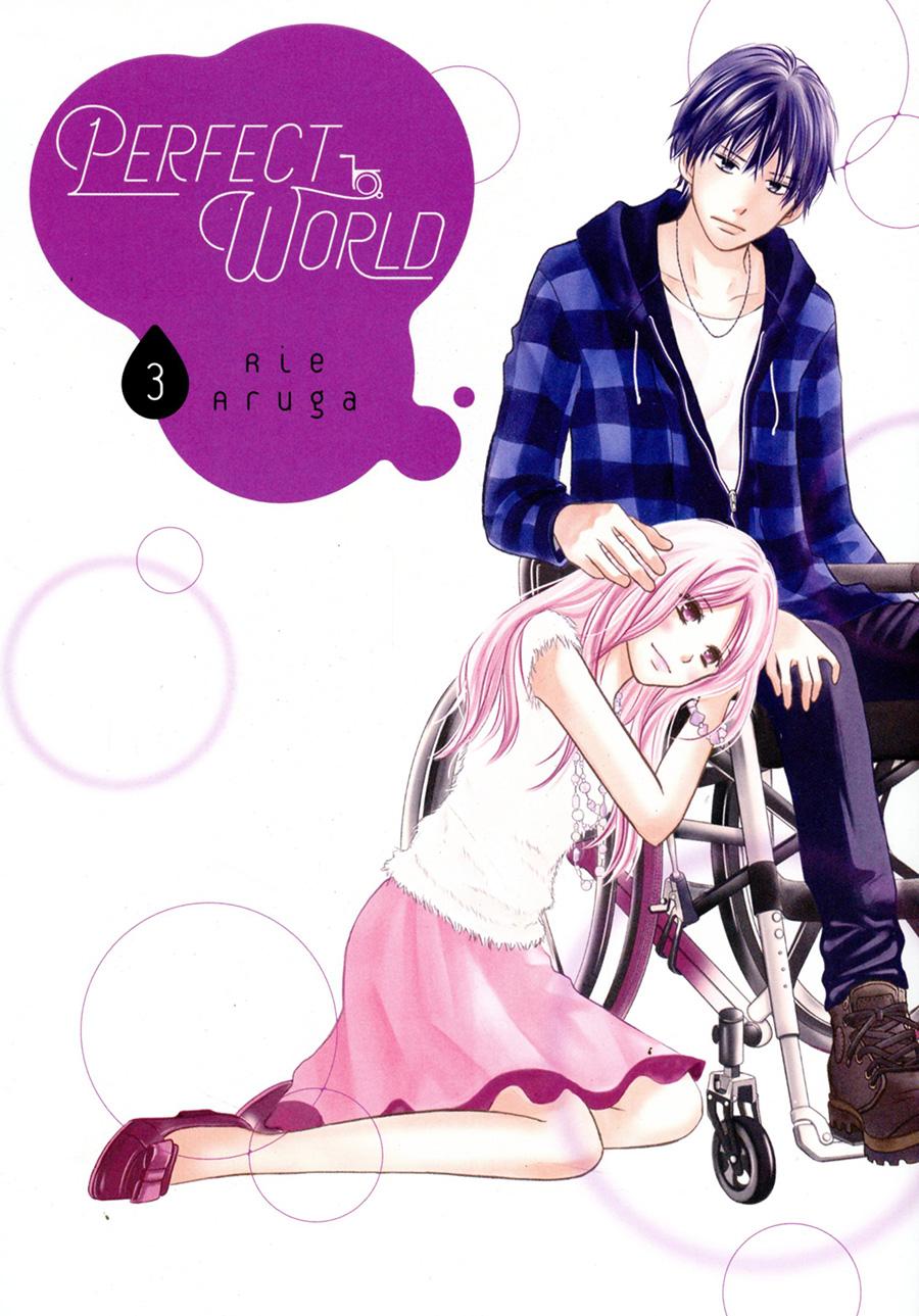 Perfect World Vol 3 GN
