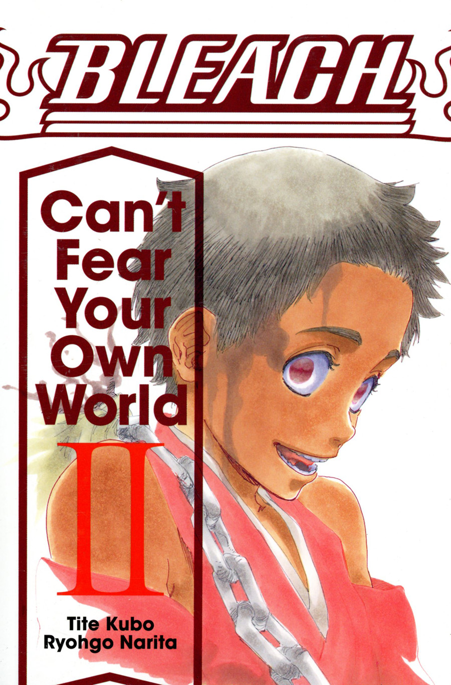 Bleach Cant Fear Your Own World Vol 2 TP