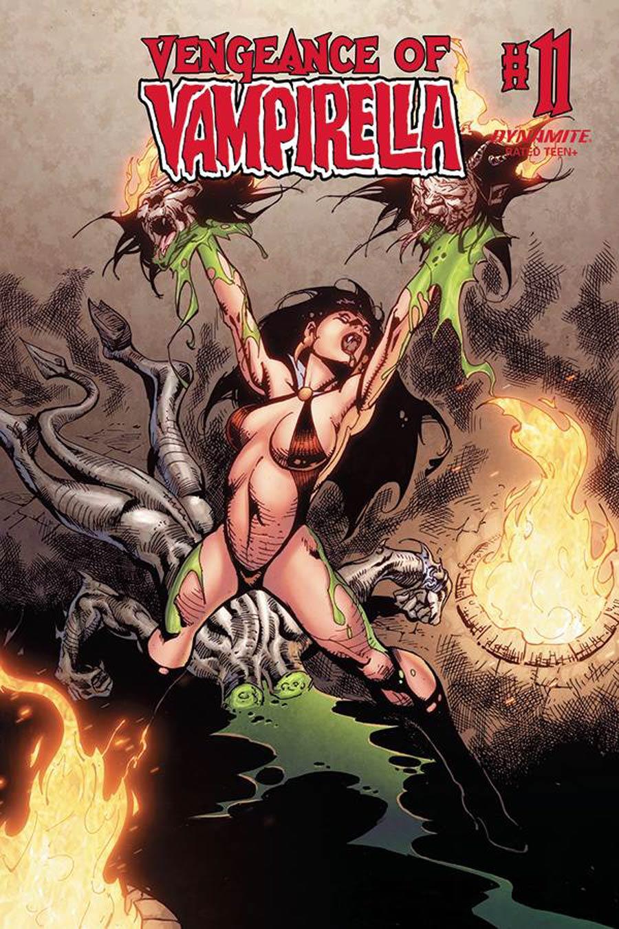 Vengeance Of Vampirella Vol 2 #11 Cover E Variant Roberto Castro Cover