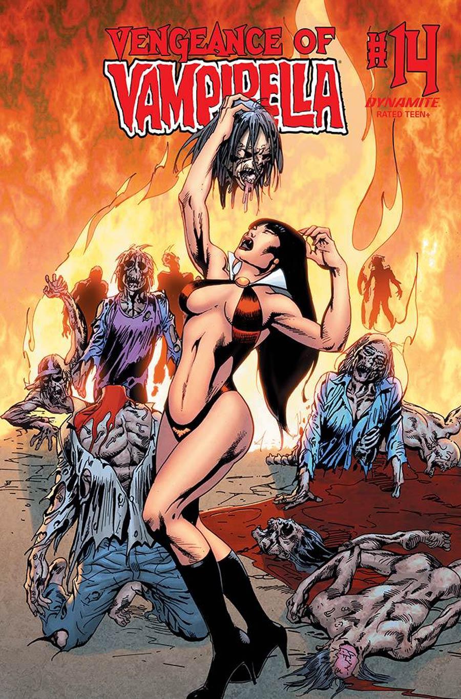Vengeance Of Vampirella Vol 2 #14 Cover E Variant Roberto Castro Cover