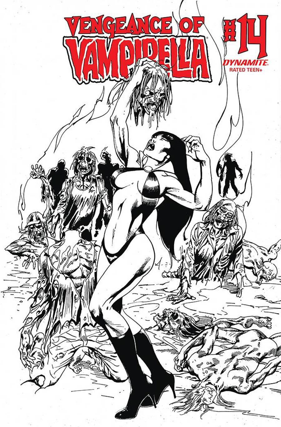 Vengeance Of Vampirella Vol 2 #14 Cover G Incentive Roberto Castro Black & White Cover